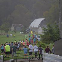 Cow Run photo