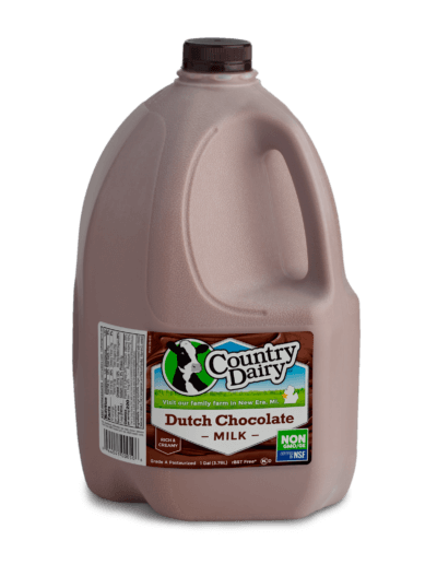 Dutch Chocolate Milk - Gallon